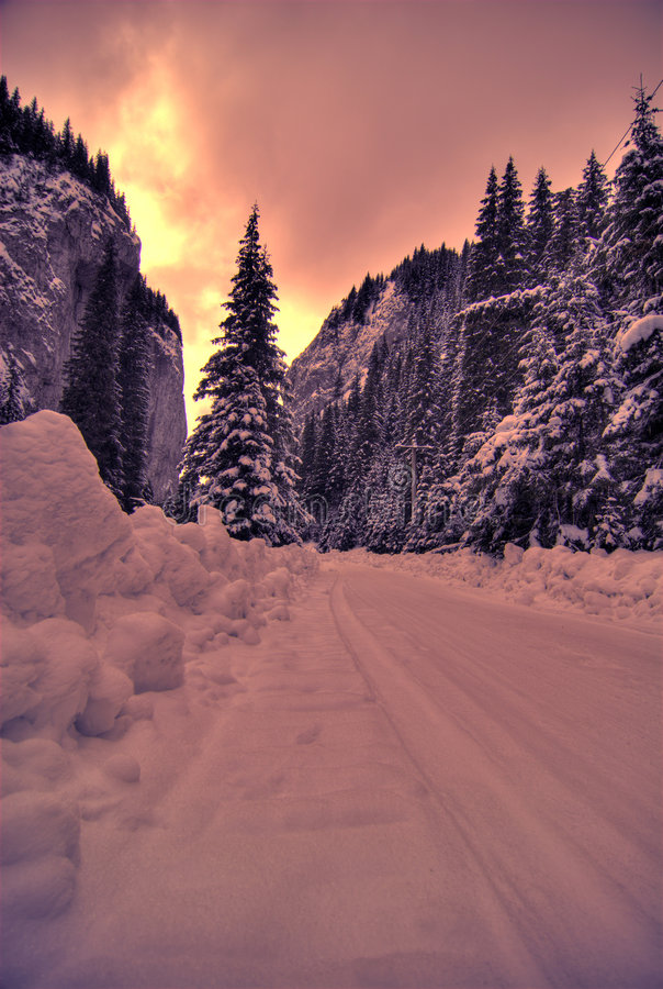 Puesta del sol del invierno sobre bosque fotografía de archivo libre de regalías