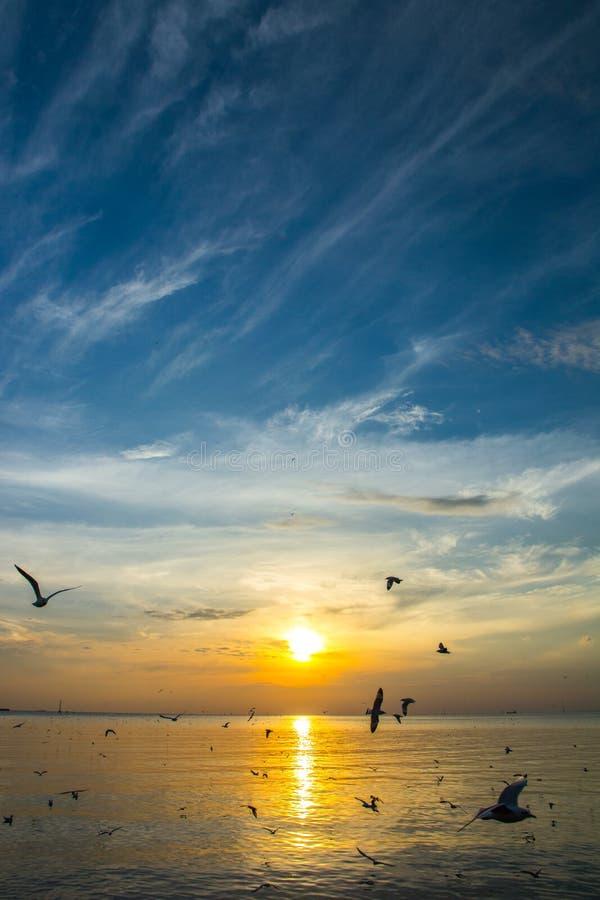 Puesta del sol 3 del mar fotos de archivo