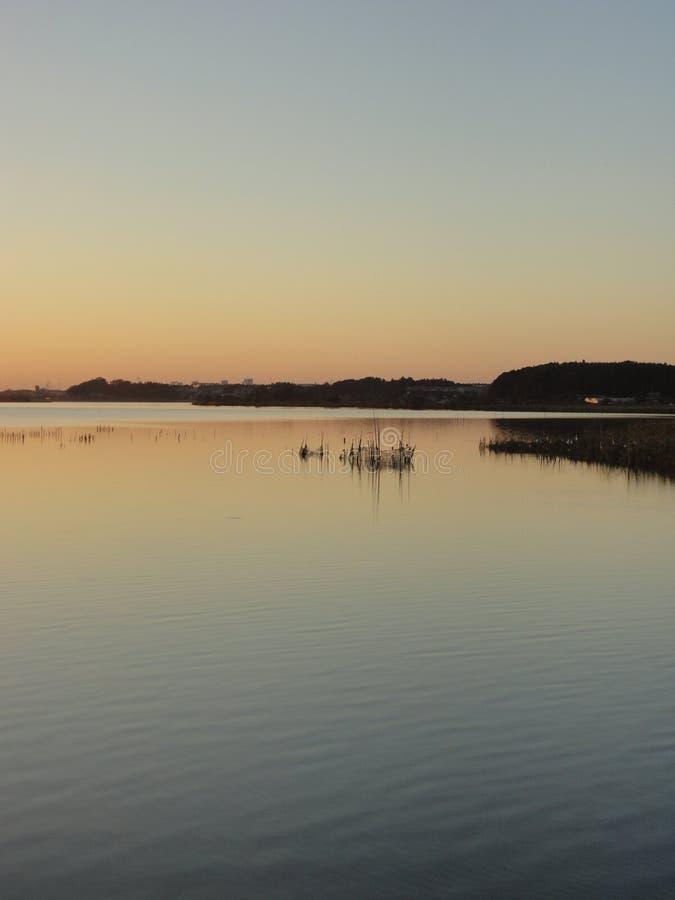 Puesta del sol del otoño en el lago Teganuma, Japón fotos de archivo libres de regalías