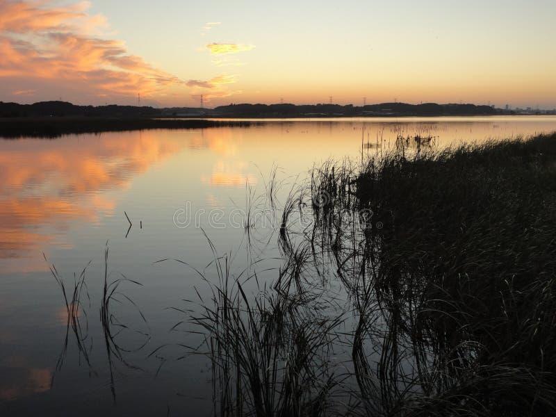 Puesta del sol del otoño en el lago Teganuma, Japón imagen de archivo