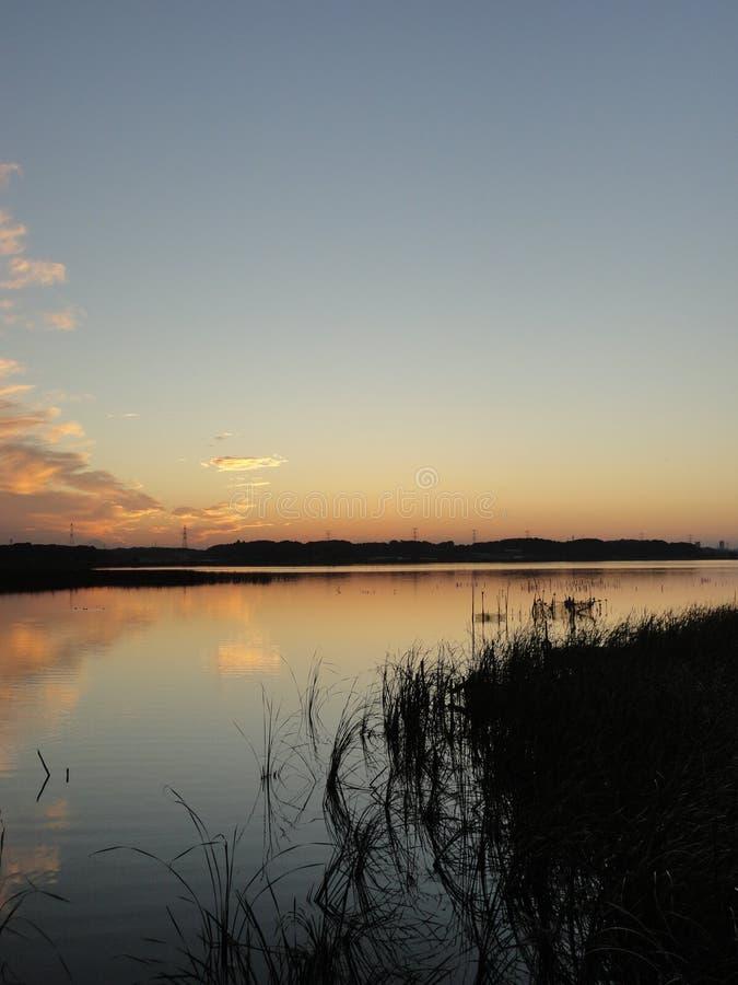 Puesta del sol del otoño en el lago Teganuma, Japón imágenes de archivo libres de regalías
