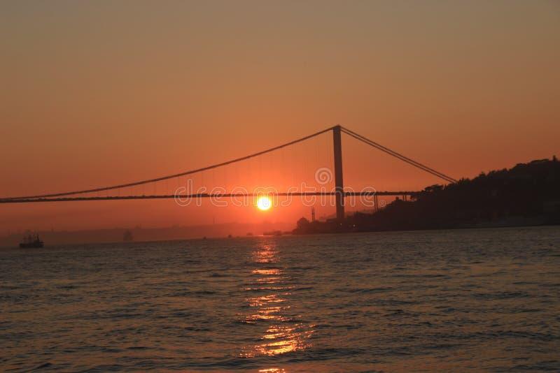 Puesta del sol del pájaro de Turkay Estambul Bósforo foto de archivo