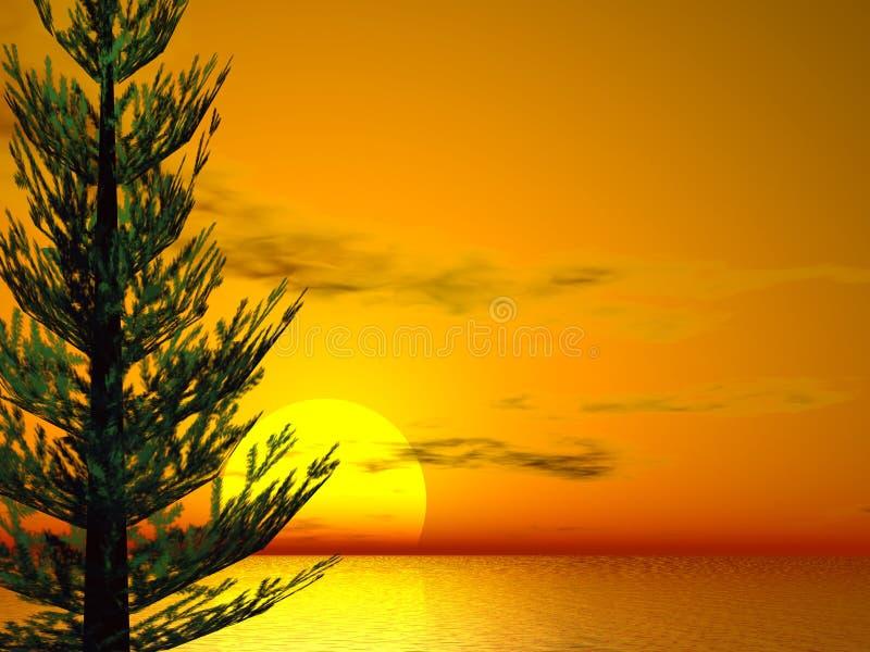 Puesta del sol del pino