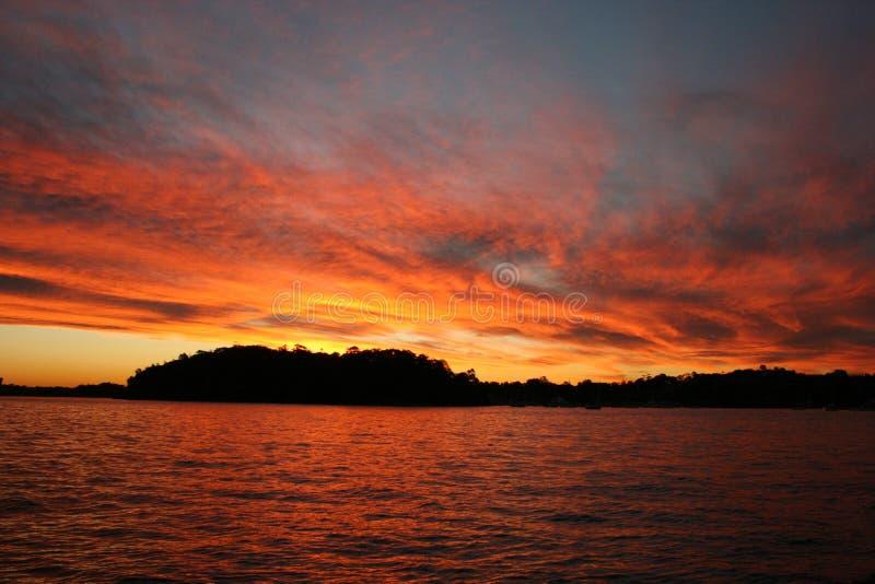 Puesta del sol del puerto de Sydney imagen de archivo