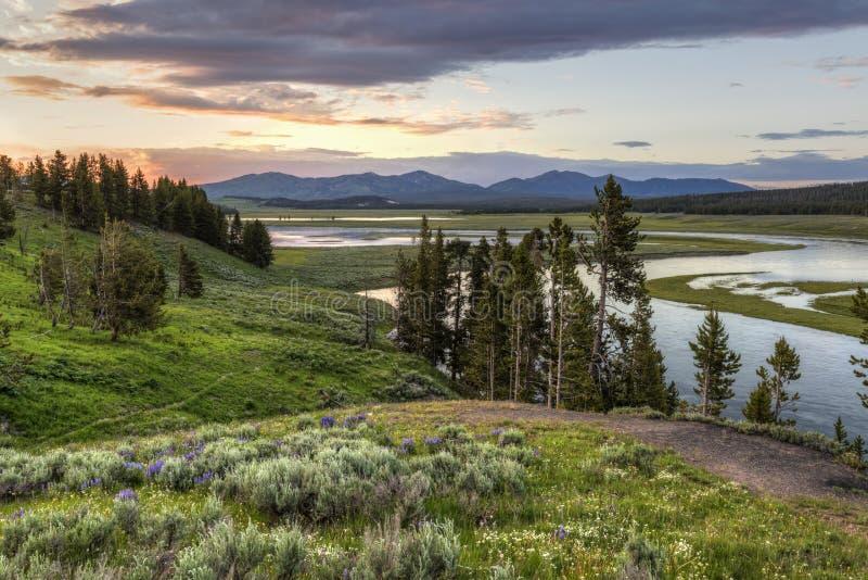 Puesta del sol del río Yellowstone foto de archivo