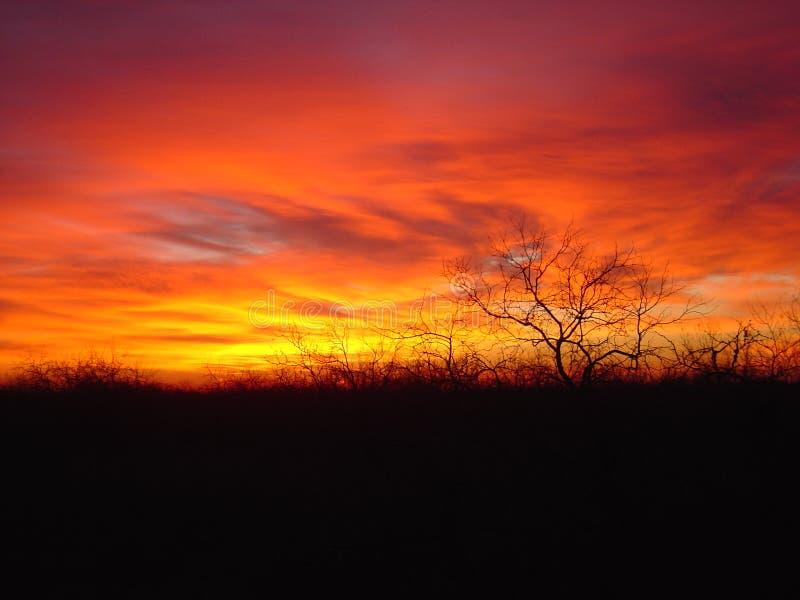 Puesta del sol del sur de Tejas foto de archivo