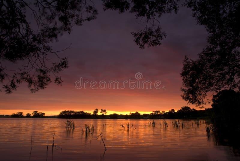 Download Puesta del sol del verano imagen de archivo. Imagen de oscuro - 7283855