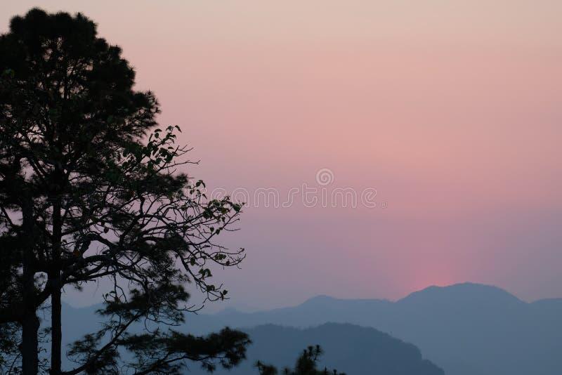 Puesta del sol detrás de la montaña por la tarde con la silueta del árbol de pino imágenes de archivo libres de regalías