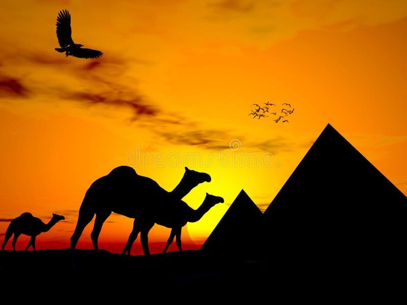 Puesta del sol Egipto del desierto ilustración del vector