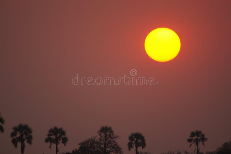 Puesta del sol en África foto de archivo libre de regalías