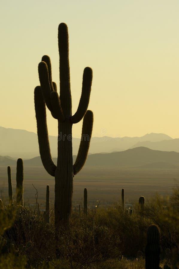 Puesta del sol en Arizona fotografía de archivo