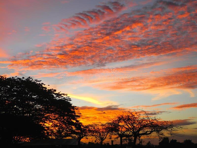 Puesta del sol en Borneo - Malasia imagen de archivo