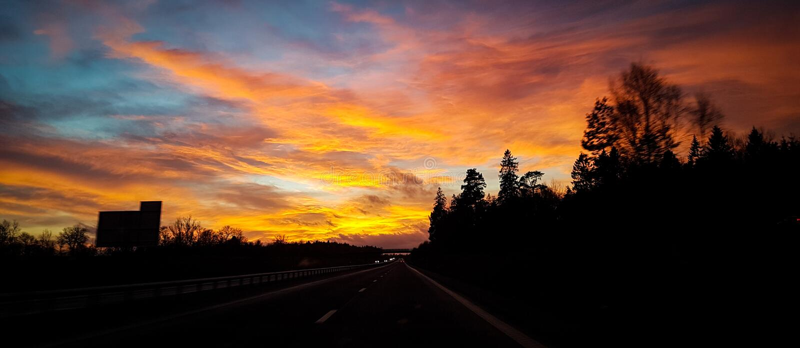 Puesta del sol en bosque sueco imagen de archivo