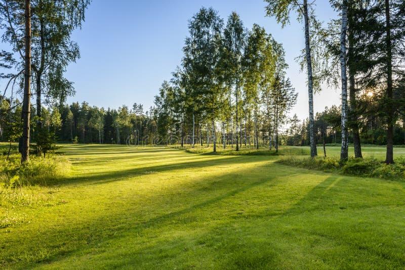 Puesta del sol en campo de golf en Polonia fotografía de archivo