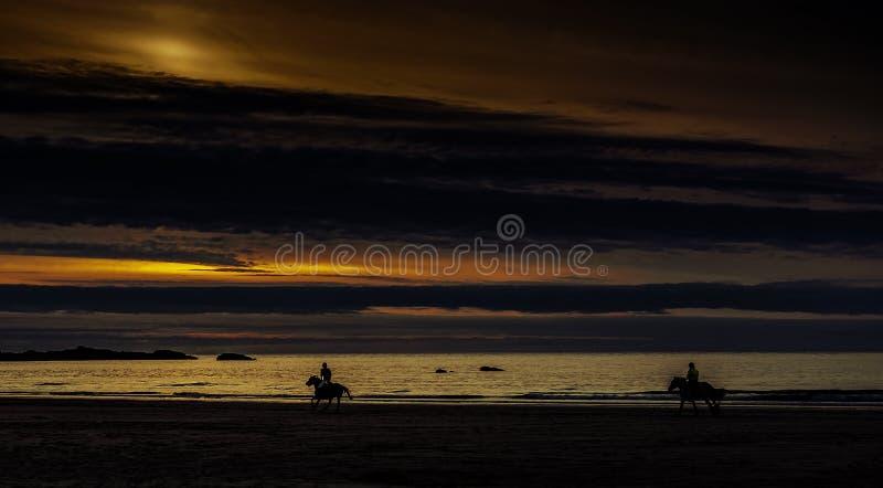 Puesta del sol en Cornualles con los caballos/St Ives foto de archivo