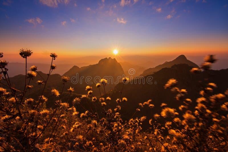 Puesta del sol en Doi Luang Chiang Dao, Chiang Mai fotografía de archivo libre de regalías