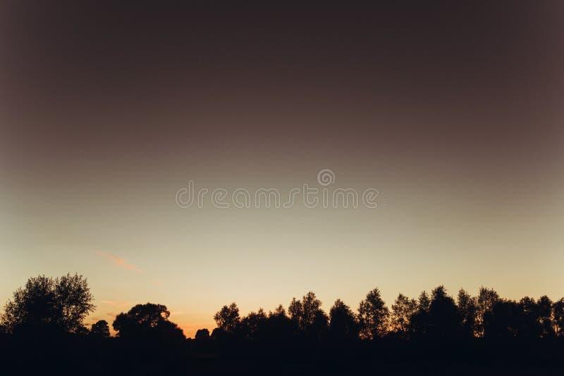 Puesta del sol en el campo del verano y árboles cielo y prado bajo sorprender imagen de archivo libre de regalías