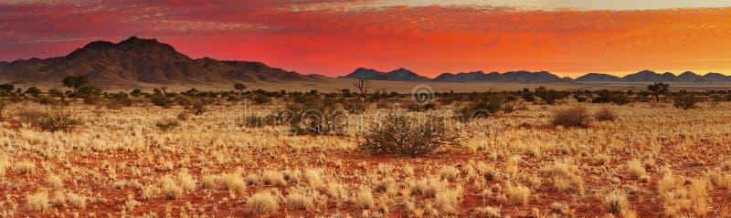 Puesta del sol en el desierto de Kalahari imagenes de archivo