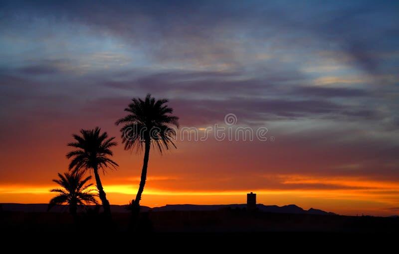 Puesta del sol en el desierto de Sáhara imagen de archivo