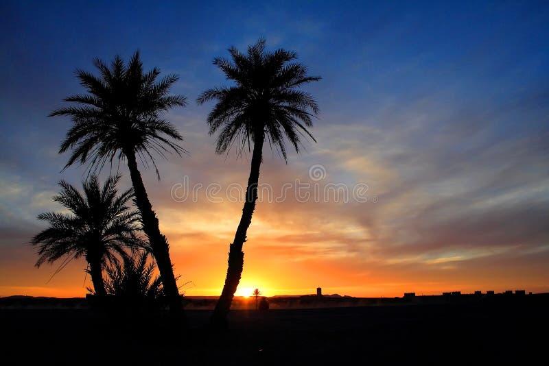 Puesta del sol en el desierto de Sáhara fotos de archivo