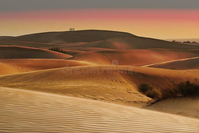 Puesta del sol en el desierto de Thar en la India fotos de archivo
