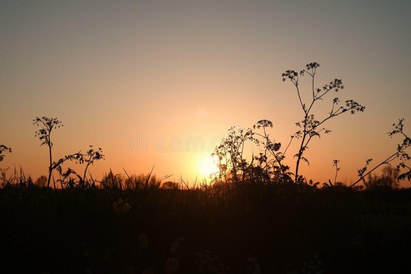 Puesta del sol en el dique en Vianen, Países Bajos imagen de archivo libre de regalías