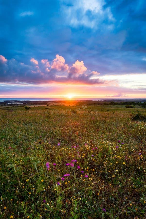Puesta del sol en el horizonte con el cielo sobre un campo rural y el mar en el fondo Puesta del sol, salida del sol sobre campo  imagen de archivo libre de regalías
