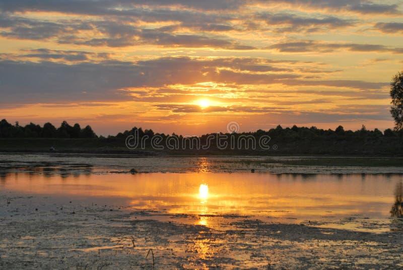 Puesta del sol en el lago Igualación de la luz con vida del río fotos de archivo