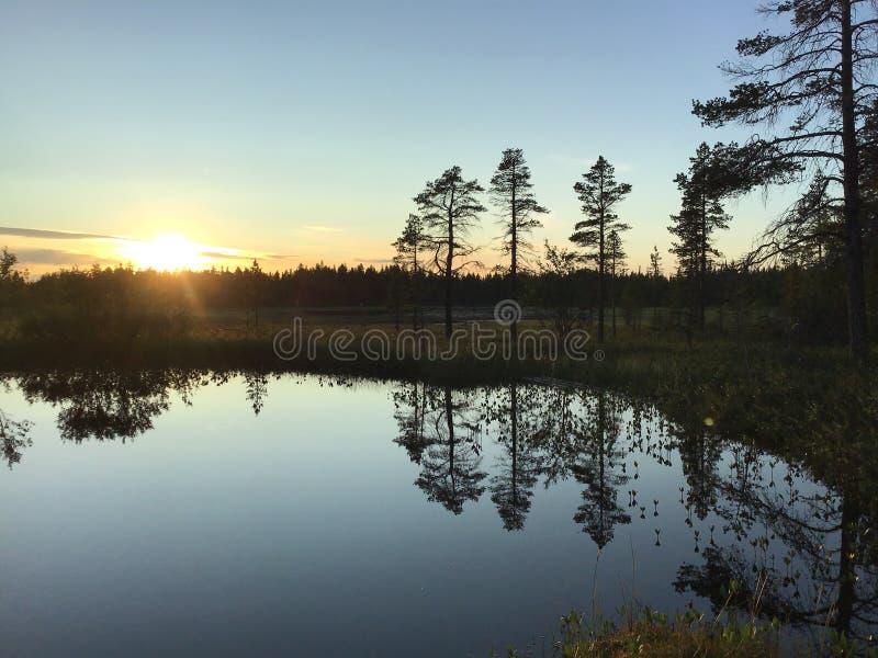 Puesta del sol en el lago salvaje del bosque foto de archivo libre de regalías