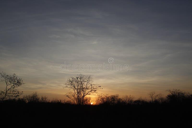 Puesta del sol en el país abierto imagen de archivo libre de regalías