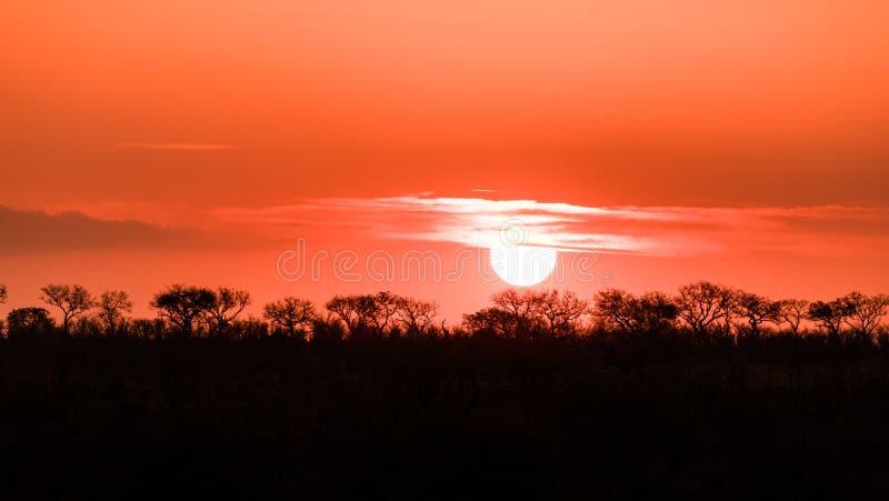 Puesta del sol en el parque nacional de Kruger fotografía de archivo libre de regalías