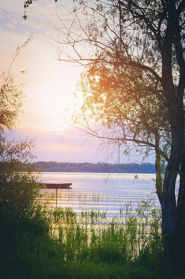 Puesta del sol en el río - un paisaje de igualación hermoso del verano Rusia Fotografía vertical foto de archivo