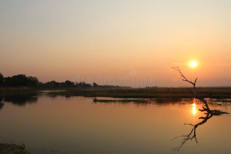 Puesta del sol en el río Zambezi foto de archivo libre de regalías