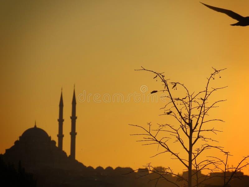 Puesta del sol en Estambul foto de archivo