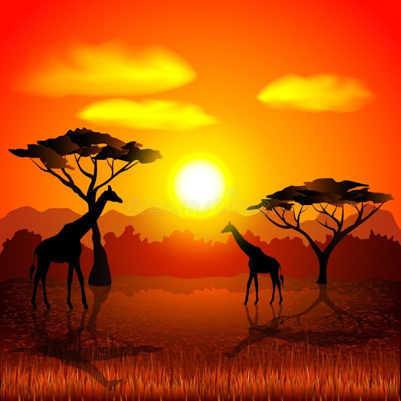 Puesta del sol en fondo africano del vector de la sabana stock de ilustración
