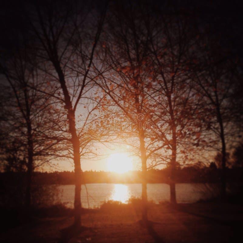 Puesta del sol en Greenlake fotos de archivo