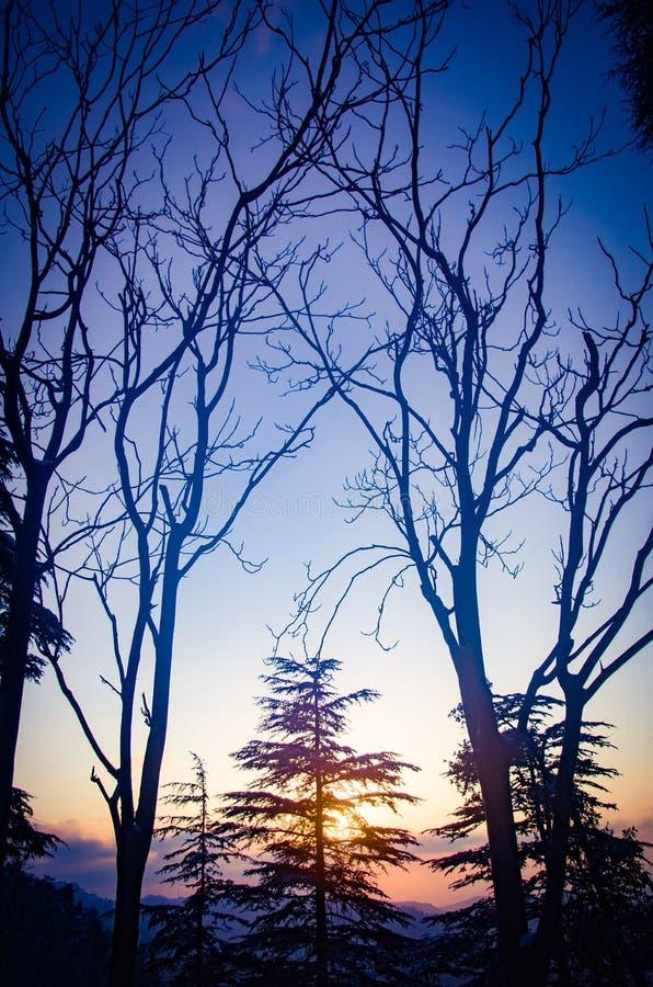 Puesta del sol en Himachal imagen de archivo libre de regalías