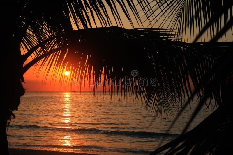 Puesta del sol en Jamaica Mar del Caribe imagen de archivo libre de regalías