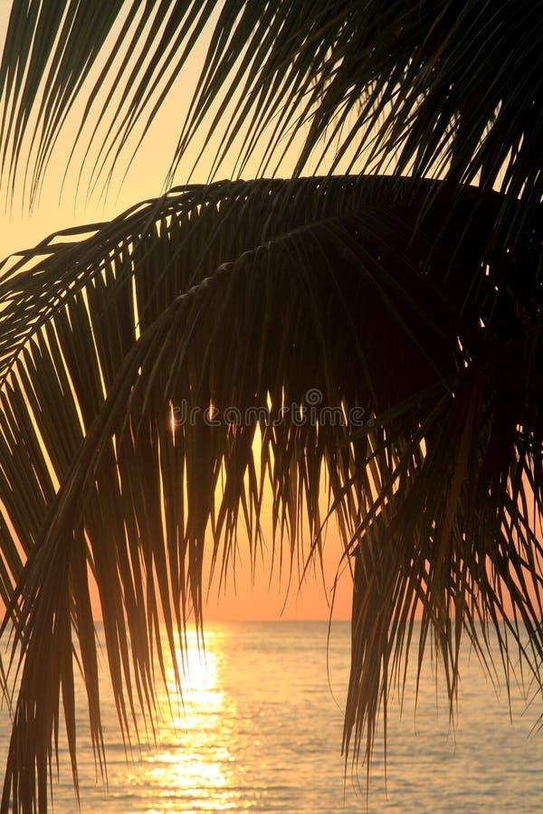 Puesta del sol en Jamaica Mar del Caribe foto de archivo libre de regalías