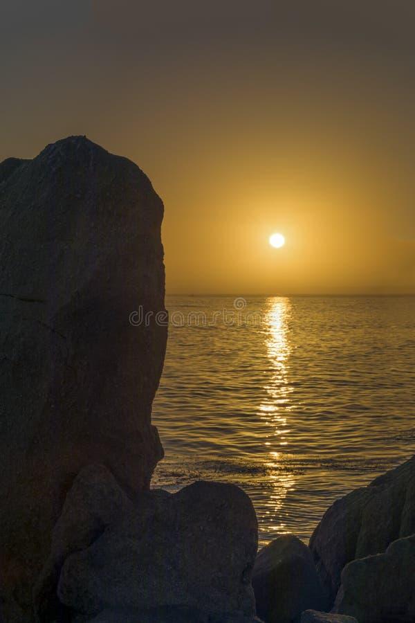 Puesta del sol en la arboleda pacífica, California imagen de archivo