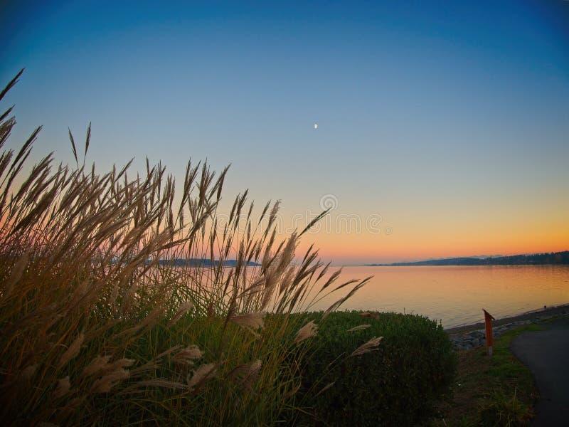 Puesta del sol en la orilla de Sidney foto de archivo
