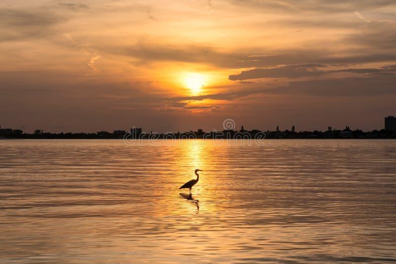 Puesta del sol en la playa dominante de la siesta imagen de archivo libre de regalías