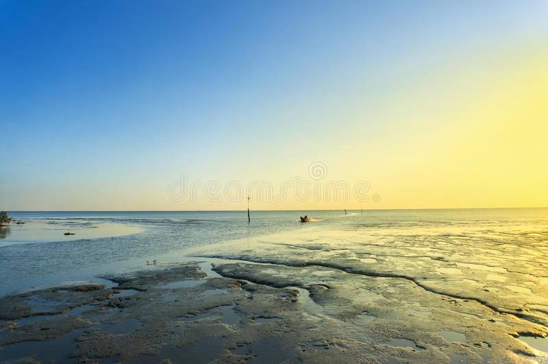 Puesta del sol en la playa fangosa fotos de archivo libres de regalías