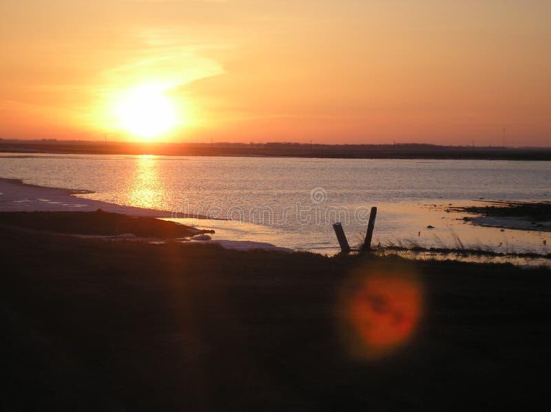 Puesta del sol en la pradera fotografía de archivo libre de regalías