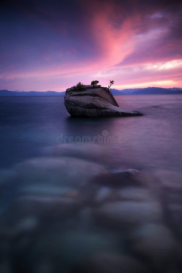 Puesta del sol en la roca de los bonsais, el lago Tahoe imágenes de archivo libres de regalías