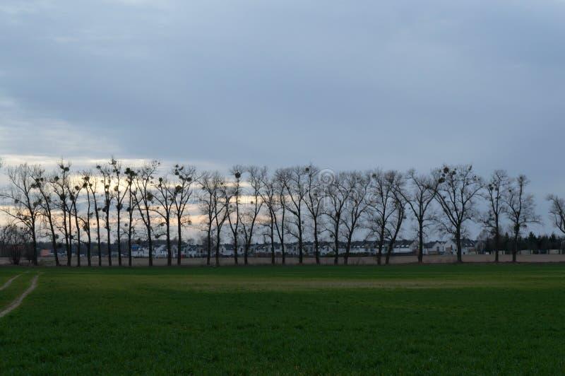 Puesta del sol en los suburbios imagen de archivo libre de regalías
