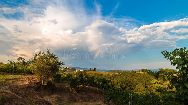 Puesta del sol en los vi?edos de Rosazzo despu?s de la tormenta fotos de archivo