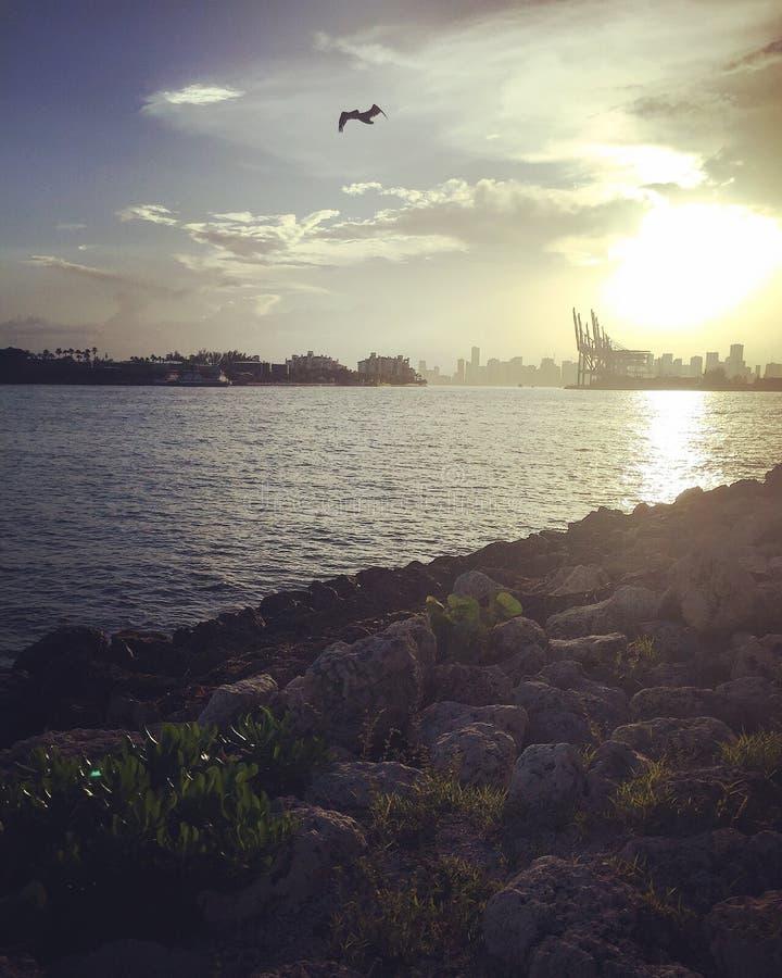 Puesta del sol en Miami fotos de archivo libres de regalías