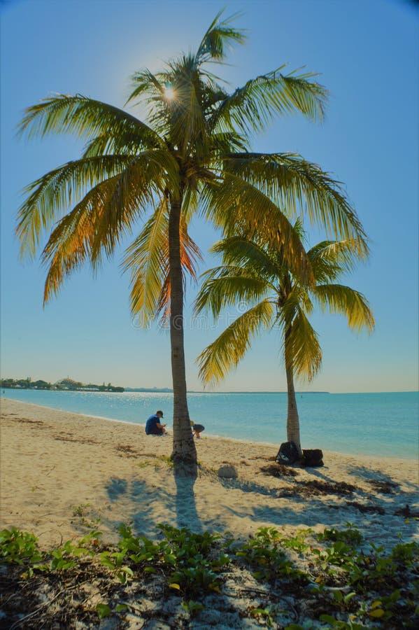 Puesta del sol en Miami - FL fotografía de archivo