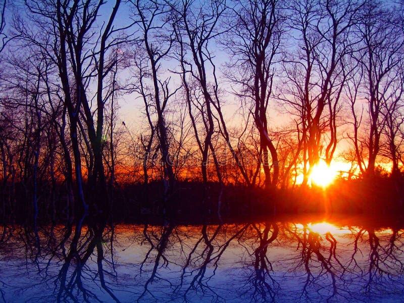 Puesta del sol en noviembre fotografía de archivo libre de regalías